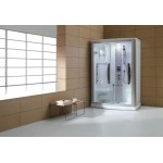 TORA  Steam Room  TR-SSR-STR-09946-WW